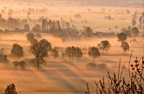Breton mists