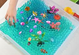 ocean-discovery-box-revelae-kids1.jpg