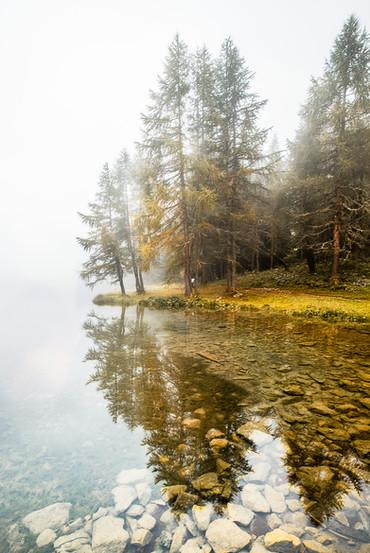 Nebel am Palpuognasee