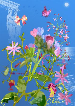 Bouquet sáfico