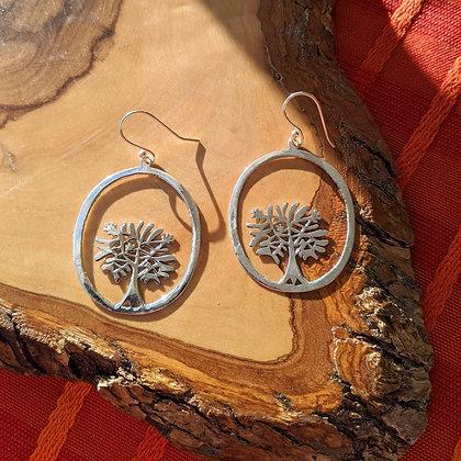 Large Circle Tree Earrings   Sterling Silver