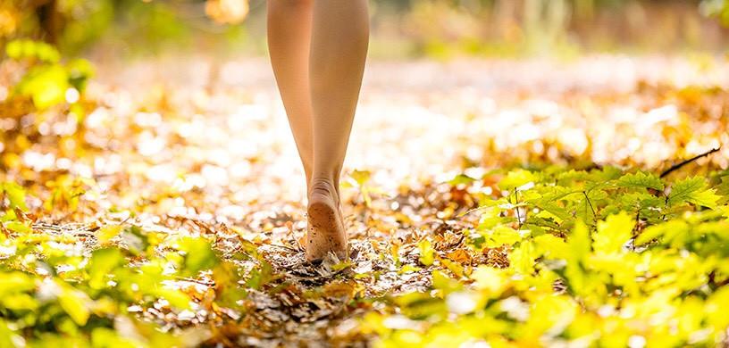 WALKING IN LEAVES.jpg