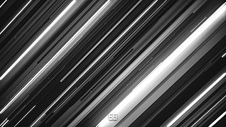 """WALLPAPER FROM """"SG DESIGNS"""""""