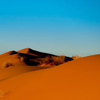 W6 -  Shut QLD Outback Big Red Dune FLIP