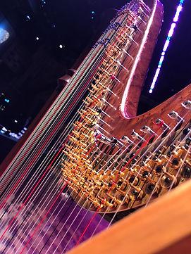 Harp strings.jpg