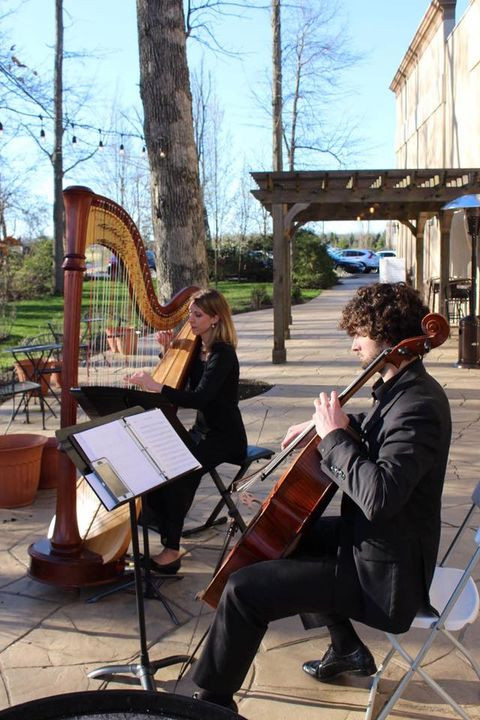 Harp and Cello for wedding