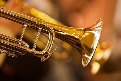 Fragment trumpet closeup .jpg
