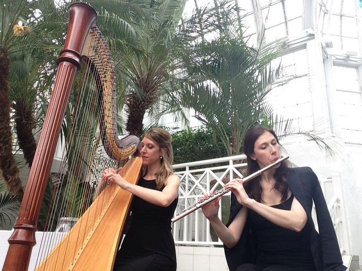 Harp and flute for wedding