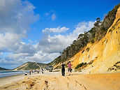 Cooloola Coastal Wilderness  Coloured Sa