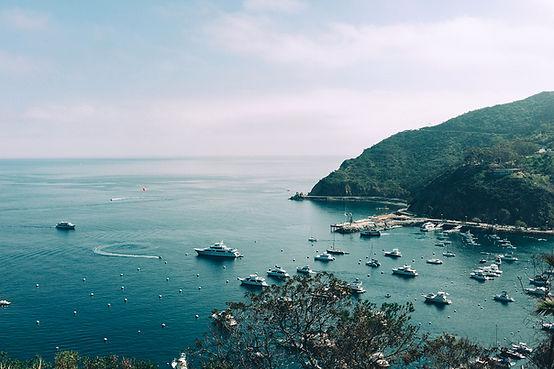 湾のボート