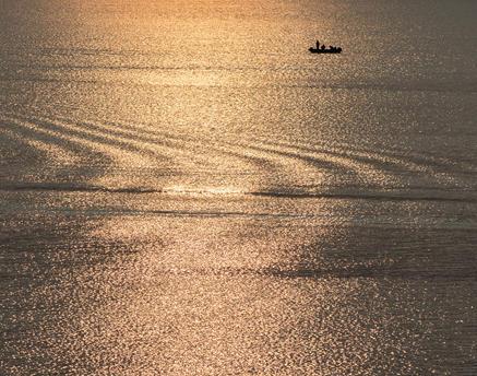 Moira Lake  3581.jpg