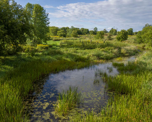 Landscape-0632
