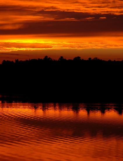 Moira Lake  2246.jpg