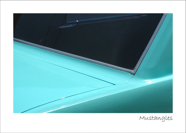Mustangles