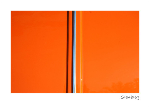Sunbug