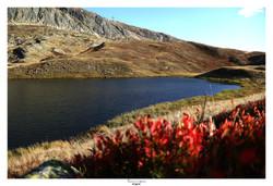 Lac Besson - Alpe d'Huez (3)