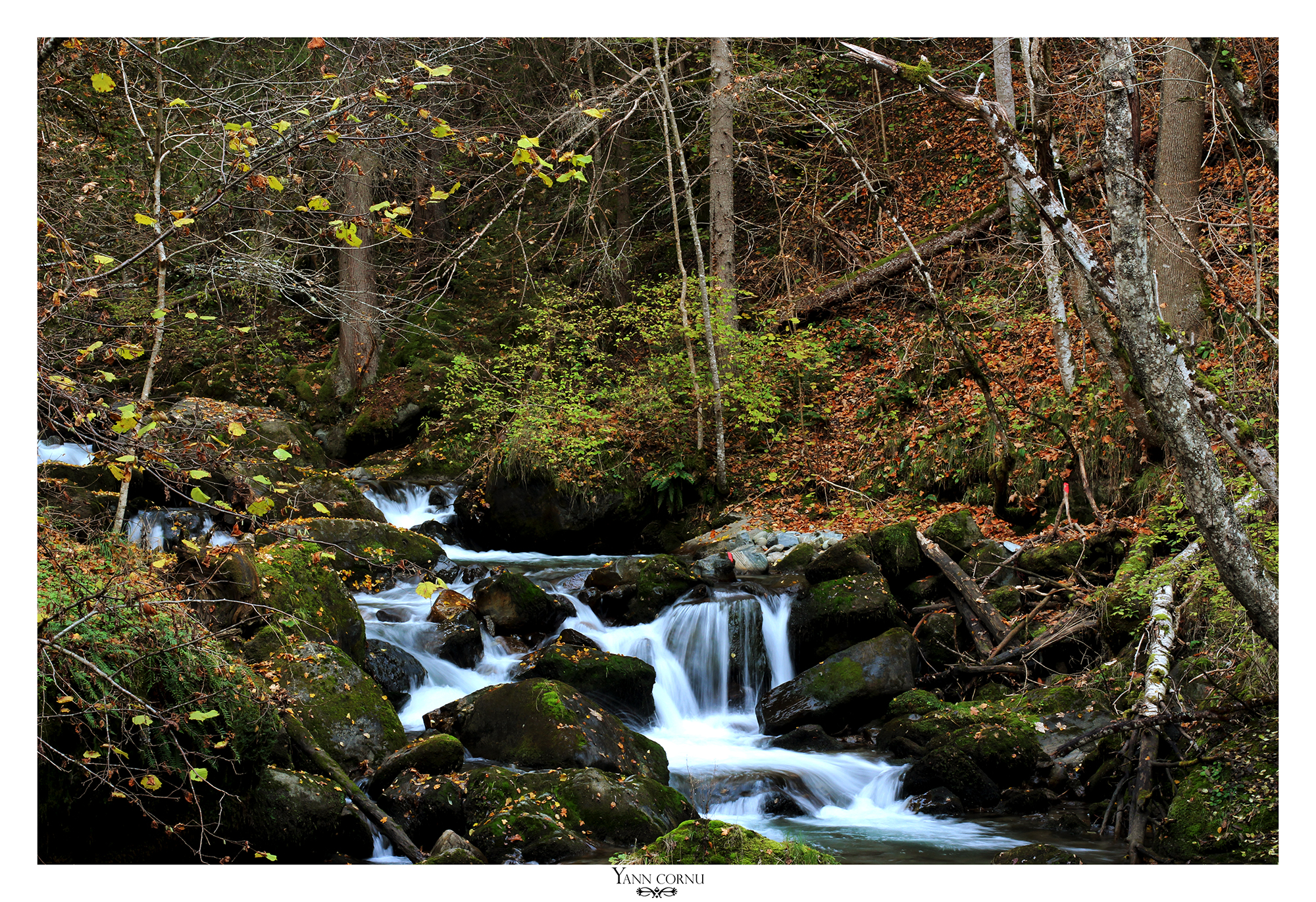 Torrent de la Sarenne 2