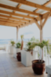 Rincon-Puerto-Rico-Guest-House-91.jpg
