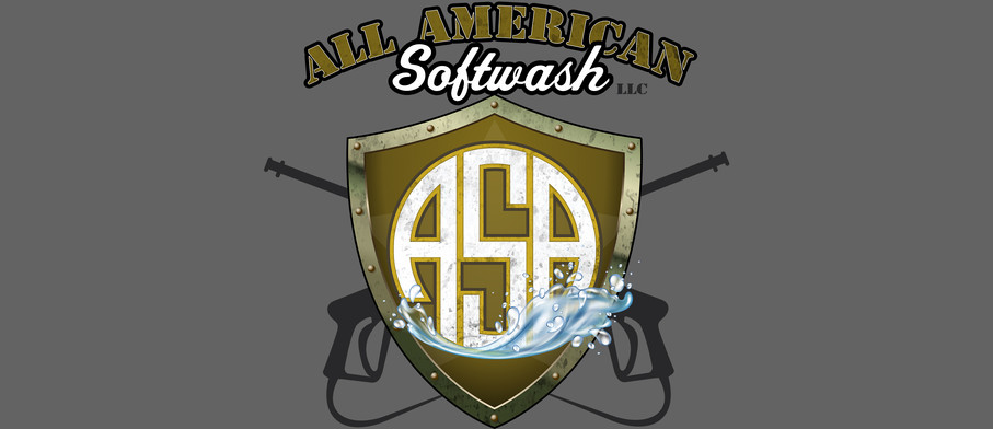 All American Softwash1.jpg