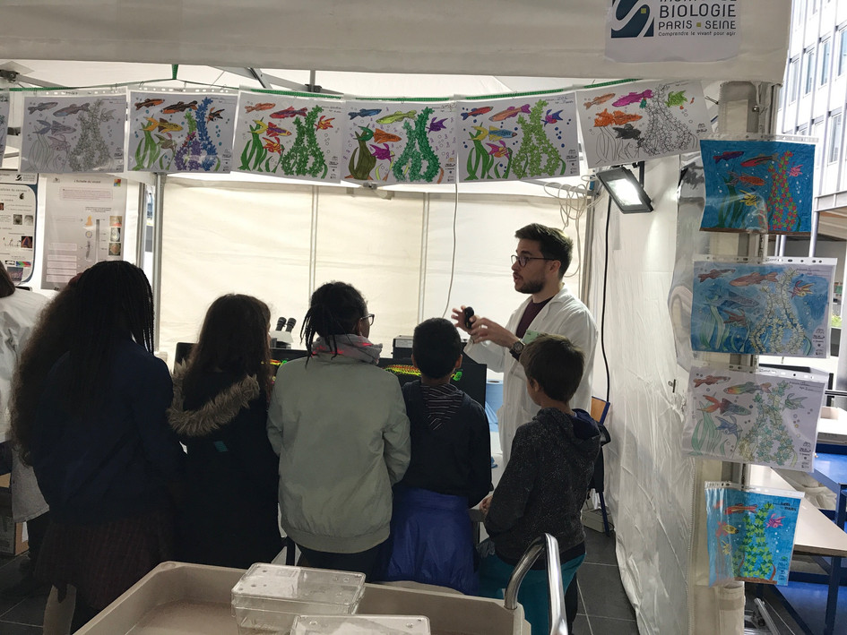 Mohamad Rima explaining our zebrafish research to a middle school class.