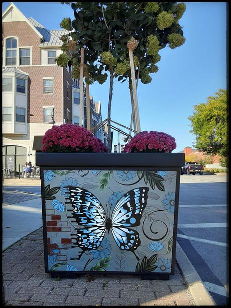 Digital Bibutter planter art