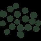 Green Spots Vanessa Evans
