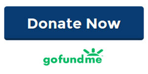 gfm-donate-now-button.jpg