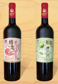 廣西大果山楂酒