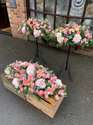 Compact pink Spray and Pedestals
