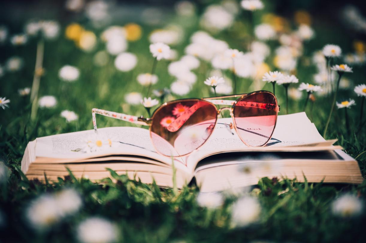 bloom-blossom-book-902981.jpg