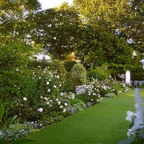 Stellenberg-Gardens.jpg