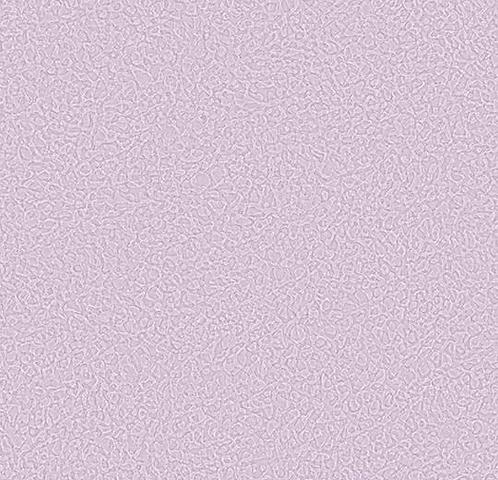 434587 Sarlon Sparkling 15dB - Акустичне покриття (2,6 мм)