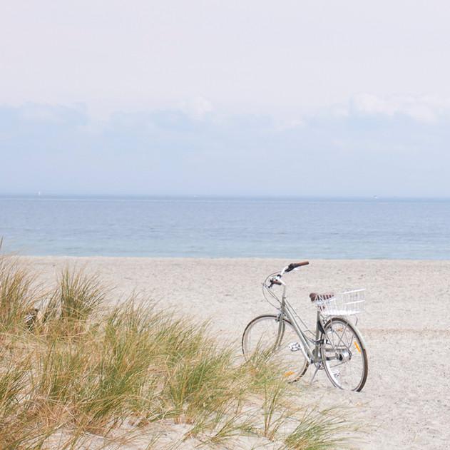 ride my bike.jpg