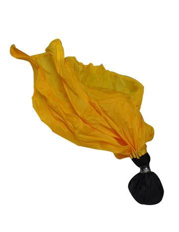 Black Ball Penalty Flag