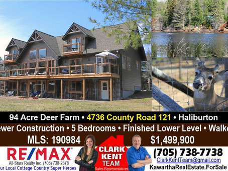 Dream Acre Whitetails For Sale- Haliburton Highlands