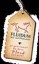 Logo_Fluidum_2Web_klein.png