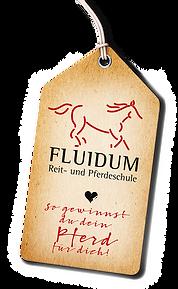 Logo_Fluidum_2Web.png