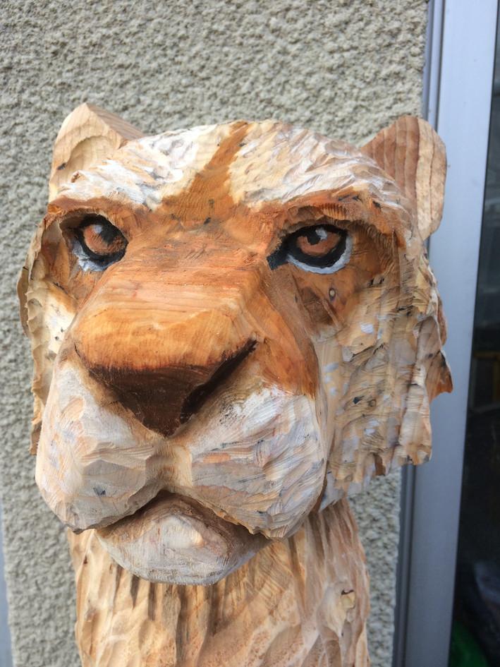 buste de Puma