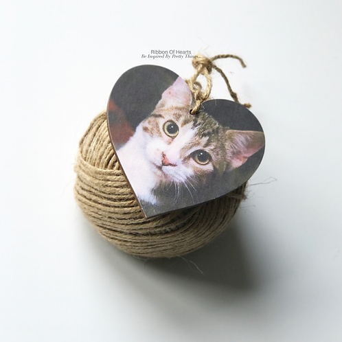 Pet Photo Hearts | Pet Memorial