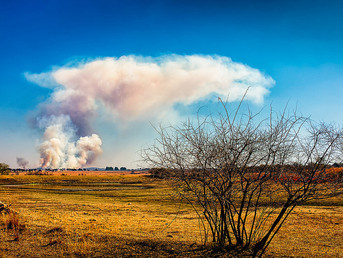 South Africa: Finnish Climate Change Research Pays Off