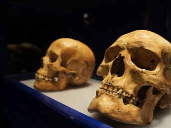 Major Population Shift In Europe Near End Of Last Ice Age Linked To Climate Change