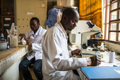 Build science in Africa