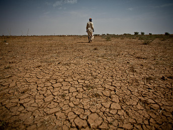 Zimbabwe: 3M Need Food Aid Amid Severe Drought, Government Minister Says