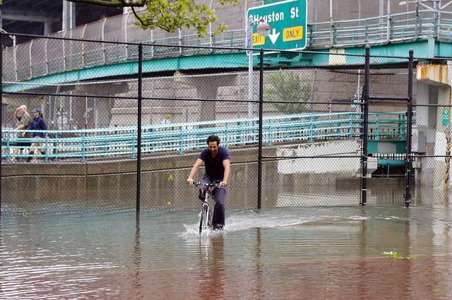 David Shankbone.jpg
