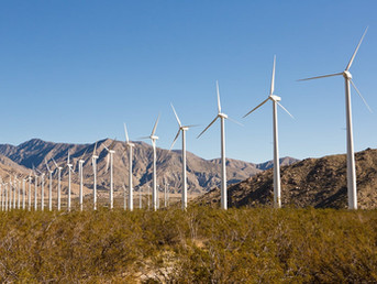 Blue States Roll Out Aggressive Climate Strategies. Red States Keep to the Sidelines.