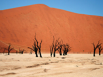 Namibia: Central Towns to Run Dry By September