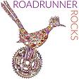 roadrunnercolor.png