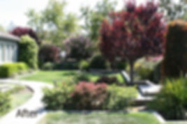 New front yard landscape design and subterranean water drainage