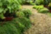 Grünflächenbetreuung Wien