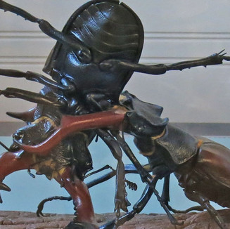 model of a fighting stag beetle